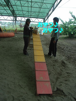 DW1.jpg